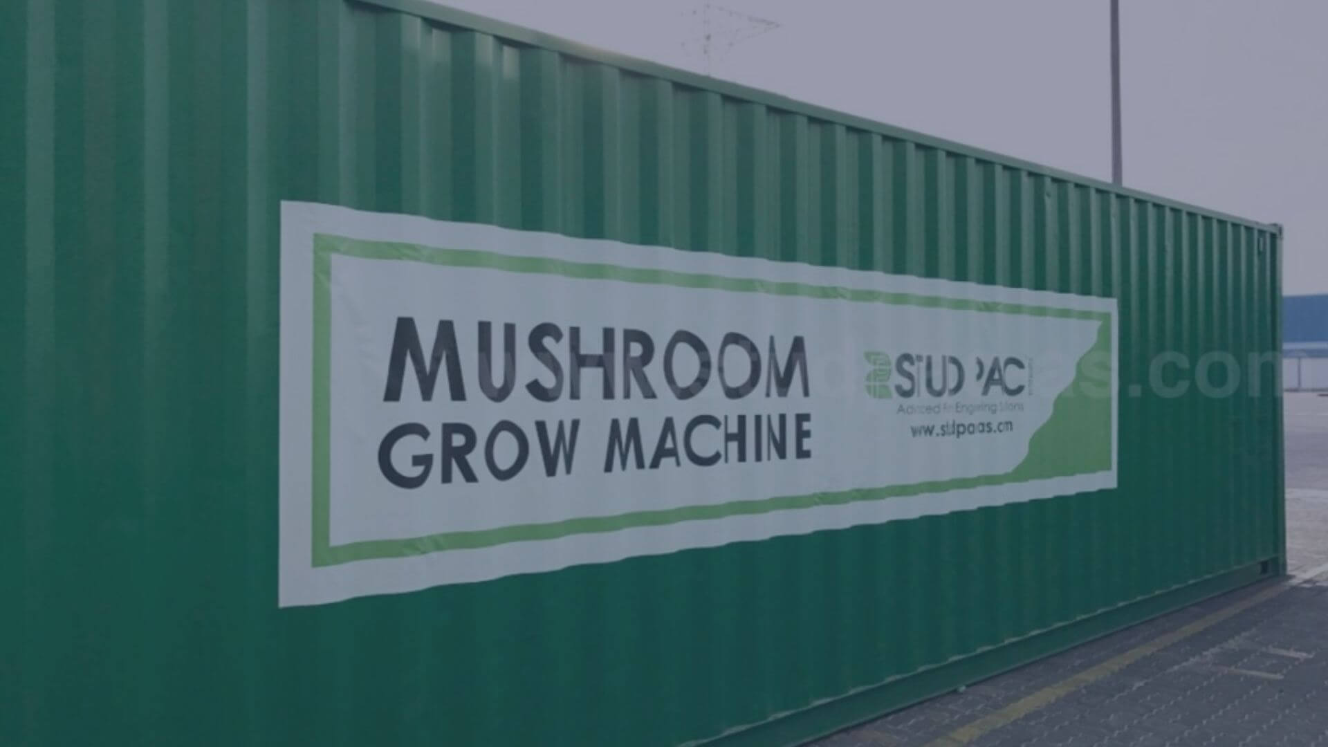 Mushroom Grow Machine - STUD PAC